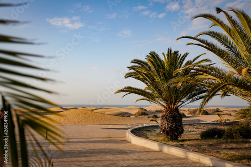 Summer background of sand and beach