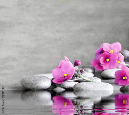 Blue flower and stone zen spa on grey background © Belight
