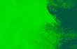 Leinwandbild Motiv green  paint brush strokes background