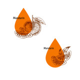 Mandarin peel oil icon set. Hand drawn sketch. Extract of plant. Vector illustration