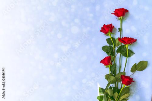 Bright colorful flower rose © alenalihacheva