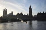 Fototapeta Big Ben - tower bridge london © tocaru