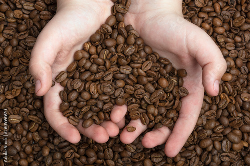 Heart made of coffee beans. Concptual view. Fresh aroma coffee beans in a hands.