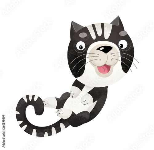 cartoon scene with cat on white background - illustration for children - 260599597