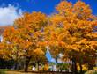 Quadro Fall landscape Quebec province Canada