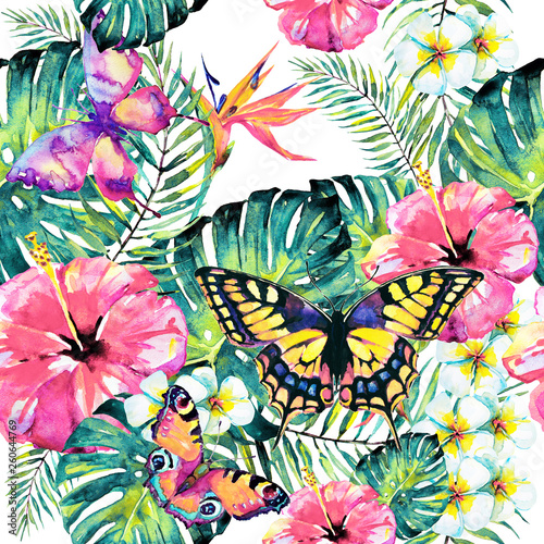 Hawaiian flowers, butterflies, watercolor, exotic plants, isolated on a white - 260644769