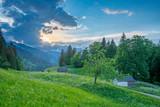 Sommer Bergwelt
