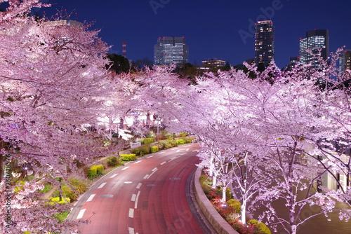 東京ミッドタウンの桜ライトアップ