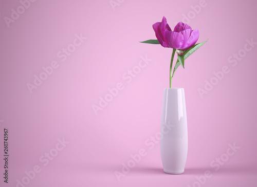 blume in weißer vase auf pinkem hintergrund