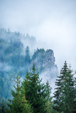 mist rising from valleys in forest in slovakia Tatra mountains