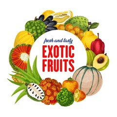 Exotic fruits, tropical citrus, cantaloupe harvest