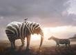 Quadro Elephant with zebra stripes
