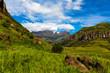 Quadro Green grass on mountain