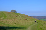 Southdown way walking over South Harting