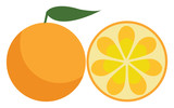 A farm fresh orange fruit to be enjoyed by someone vector color drawing or illustration