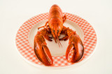 Pyszny homar świeżo parzony