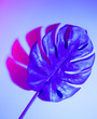 canvas print picture - Creative tropic purple leaves layout. Supernatural concept. Flat lay. Ultra violet colors.