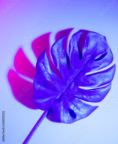 canvas print picture Creative tropic purple leaves layout. Supernatural concept. Flat lay. Ultra violet colors.