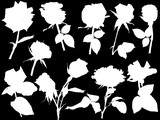 ten white roses silhouettes isolated on black