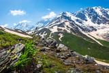 Alps nature landscape. Alpine mountains in Austria