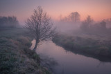 Valley of the Jeziorka River on a foggy morning near Piaseczno, Masovia, Poland