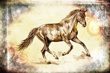 aged, animal, art, artistic, background, beautiful, beauty, beige, brown, cute, drawing, faded, farm, freehand, graphic, head, horse, illustration, image, looking, mammal, mane, mare, monochrome, must