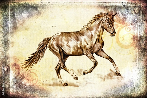 aged, animal, art, artistic, background, beautiful, beauty, beige, brown, cute, drawing, faded, farm, freehand, graphic, head, horse, illustration, image, looking, mammal, mane, mare, monochrome, must © maxtor777