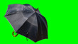 Leinwandbild Motiv Black umbrellas cut off the background to make a white background.