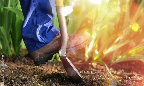 Garden dig soil agriculture shovel image worker © BillionPhotos.com