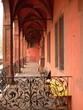 canvas print picture - Schmiedeeisen an einem Bogengang am Isenburger Schloss