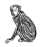 Hand drawn monkey outline sketch. Vector black ink drawing animal. Graphic illustration, isolated on white background