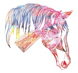 Horse's head. Drawing by hand in vintage style. Meditative coloring. coloring for children. A horse with a long mane. Arrows, points, patterns.