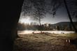 canvas print picture - See im Nebel und Sonnenaufgang mit Ente
