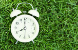 Alarm clock on fresh green gress background, morning relax time concept