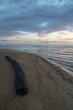 canvas print picture - Ein bunter Sonnenaufgang am Strand von Tannum Sands in Queensland Australien