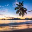canvas print picture - Urlaub auf einer tropischen Insel