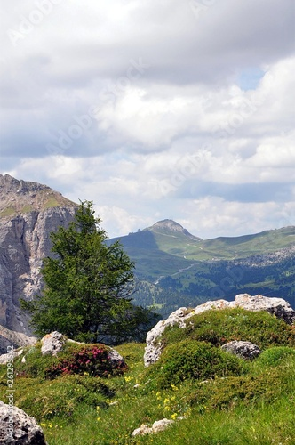 canvas print picture Dantercerpies in den Dolomiten