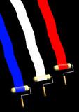 Trois rouleaux de peinture étalent le bleu, blanc, rouge du drapeau français