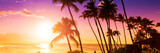 Palm tree silhouette on a background of tropical sunset - 261328340