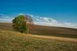 canvas print picture - Hügelige Landschaft Acker und Wiese im Herbst