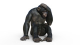Chimpanzee monkey, primate ape thinking, wild animal isolated on white background, 3D illustration
