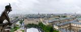 View of Paris from the Notre-Dame de Paris Tower