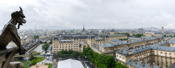 View of Paris from the Notre-Dame de Paris Tower