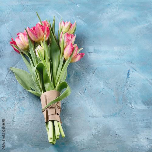 Fresh tulip flower