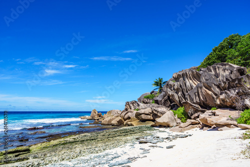Coral reef and big granite rocks with palms at the beach of grand anse, la digue, seychelles 18 - 261478570