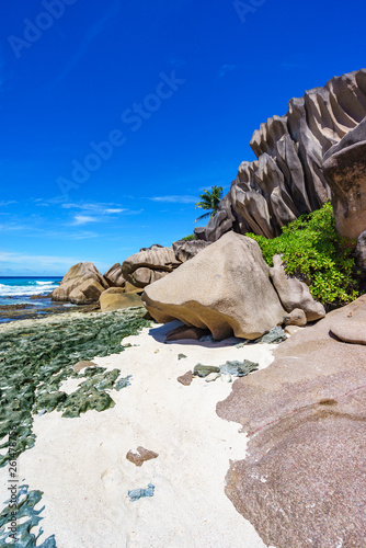 Coral reef and big granite rocks with palms at the beach of grand anse, la digue, seychelles 29 - 261478756