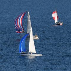 Yacht race.