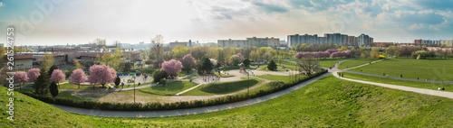 Wiosna w mieście Opole wiosna w parku - 261524753