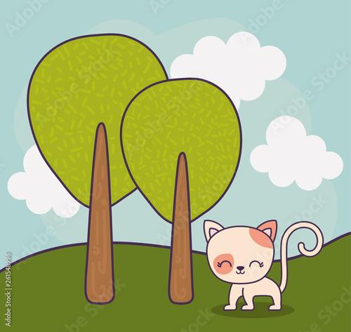 cute cat animal in landscape scene nature