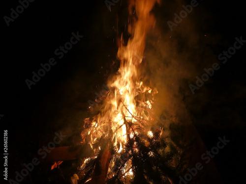 Knut Feuer - 261602186